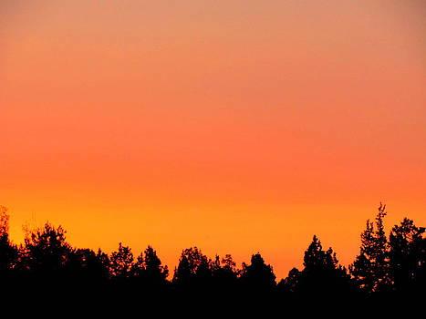 Orange Sunset by Amy Bradley