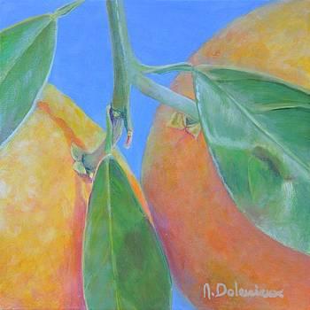 Oranges Ecartelees by Muriel Dolemieux