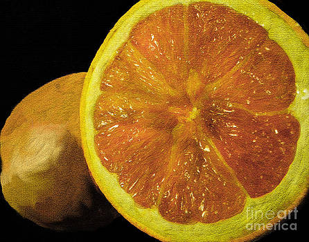 Anne Ferguson - Oranges Still Life