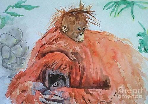 Orangutan I. by Paula Steffensen