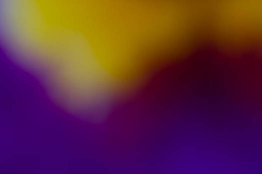 Roger Mullenhour - Orchid Abstract