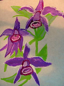 Orchid by Amy Bradley