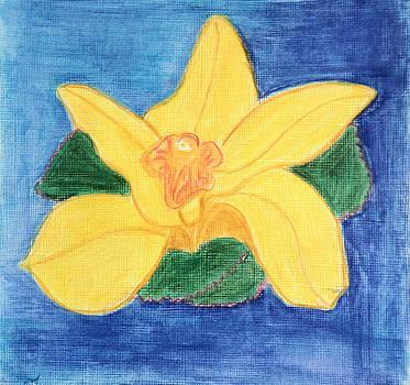 orchid cymbidium II by Jennifer Woodworth