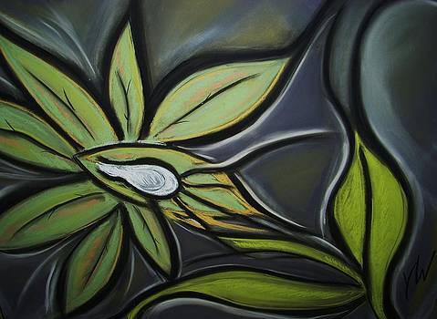 Orchid  by Gay Watters