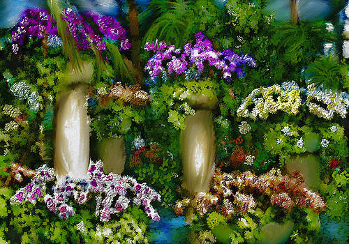 Orchid Show by Jill Balsam