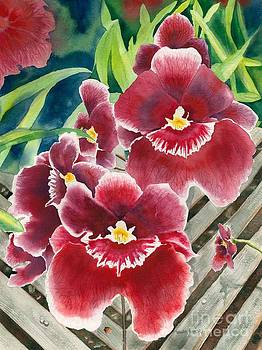 Orchids by Laura Ramsey