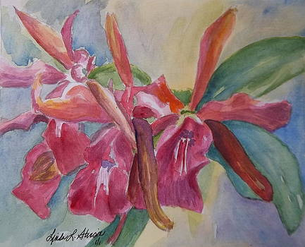 Orchids by Linda L Stinson