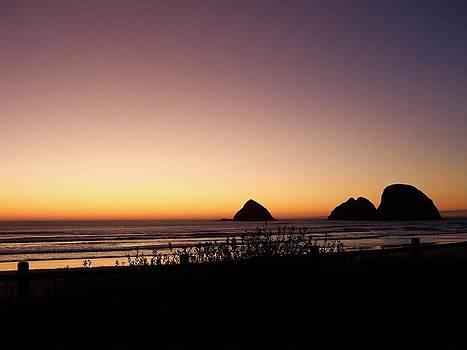 Oregon Coast 16 by Deahn      Benware