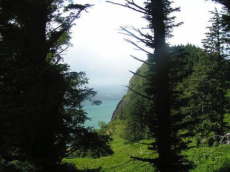 Glenna McRae - Oregon Coast Pacific Northwest