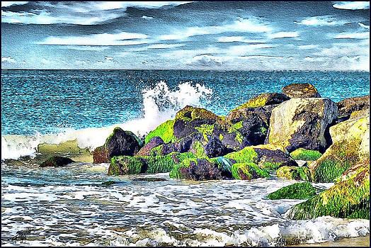 Oregon Coast by Tom Schmidt
