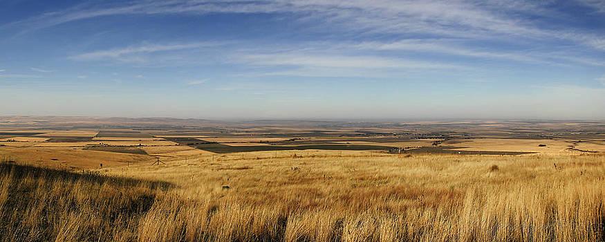 Oregon Fields by Michael Carrigan