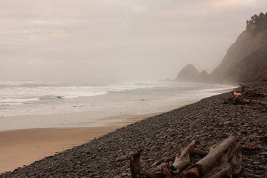 Oregon Ocean Beach 1 by Peggy Quade