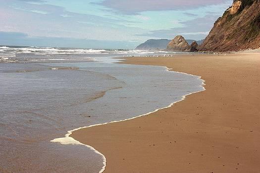 Oregon ocean beach 3 by Peggy Quade