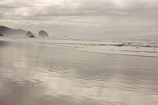 Oregon ocean beach 4 by Peggy Quade
