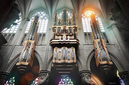 Organ in Brussels Cathedral by Viktor Korostynski