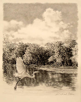 ORIGINAL Congaree River Flight by Michael Story