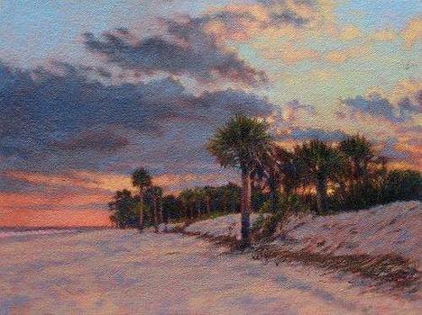 ORIGINAL Palmettos and Clouds by Michael Story