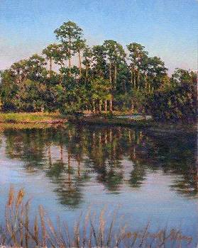 ORIGINAL Pond at Sea Pines by Michael Story