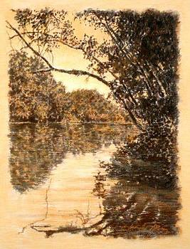 ORIGINAL Reflecting Limb Saluda River by Michael Story