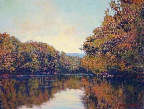 ORIGINAL View From Saluda Shoals by Michael Story