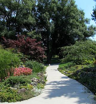 Oshawa Botanical Garden 4 by Sharon Steinhaus