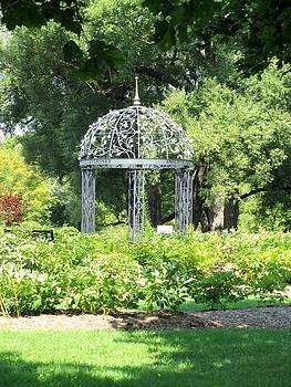 Oshawa Botanical Gardens-1 by Sharon Steinhaus
