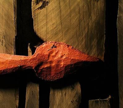 Otzi's Arrow by Richard Lloyd