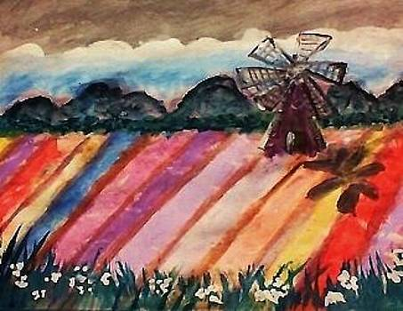 Our local flower fields by Anna Lewis