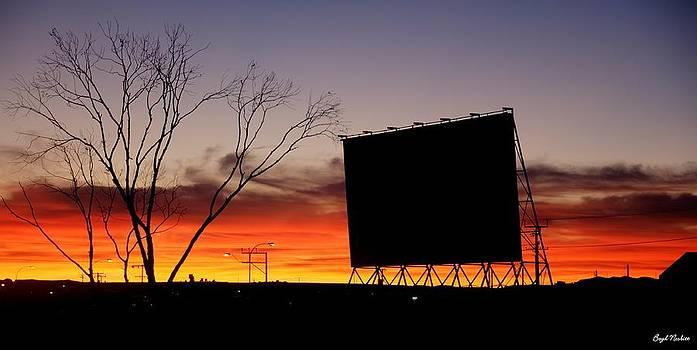 Outback Sunset by Boyd Nesbitt