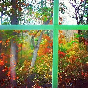 Outside My Window~ by Lia Kent