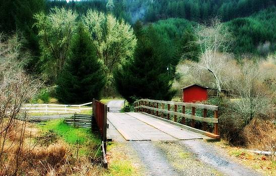 Over the bridge by Cathie Tyler