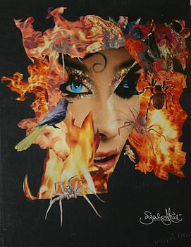 Sarahmarie Bostron Artwork For Sale Edmonds Wa