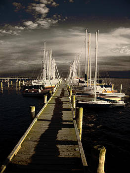 Overlooking The Yacht Dock by Florin Birjoveanu