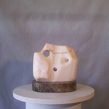 Owl Eye by Susanna Petrovit