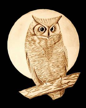 Owl by Karen R Scoville