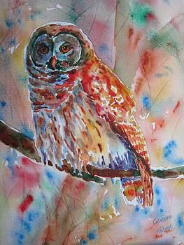 Owl of Wisdom by Corynne Hilbert