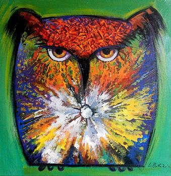 Owl with sky by Luiza Patriciu
