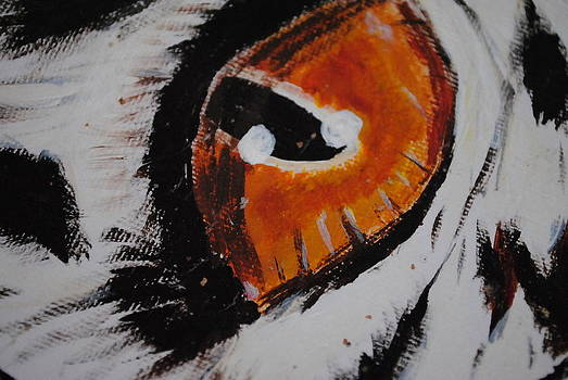 Owls Eye by Alexa  Brtna