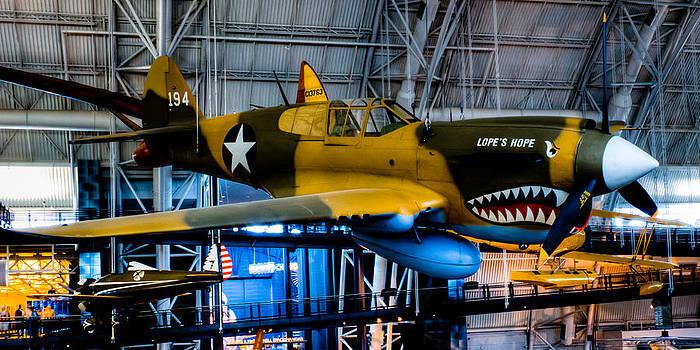 David Hahn - P-40E Warhawk
