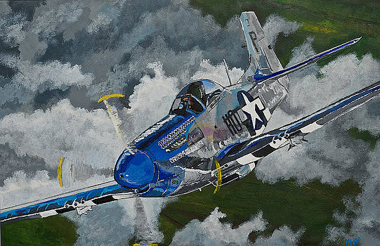 P-51 Mustang over Germany by Terry Gill