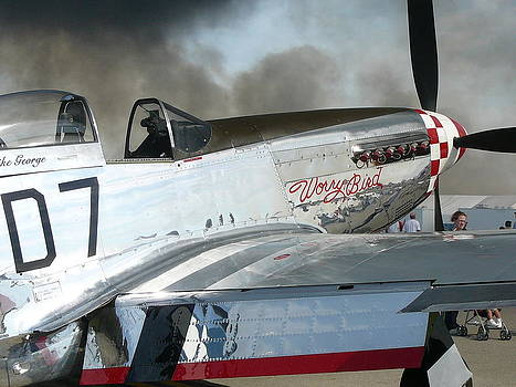 P-51 Worry Bird by Mark Lehar