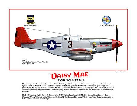 P-51C Daisy Mae Profile by Jerry Taliaferro