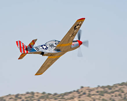 P51 Wheels Up by Tom Dowd