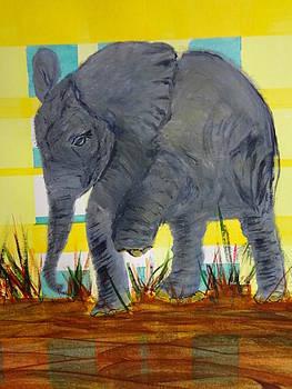 Nancy Fillip - Pachyderm