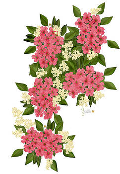 Pacific Northwest Spring Gifts by Anne Norskog