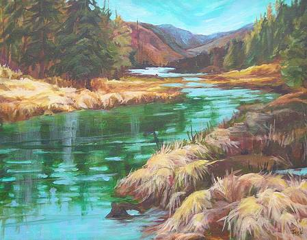 Pack River Color by Barbara Field
