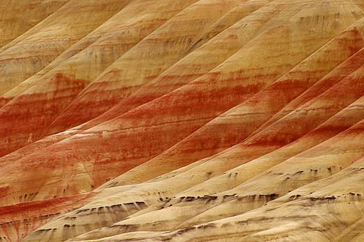 Painted Hills Detail by Craig Pifer