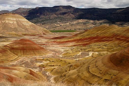 Painted Hills View by Craig Pifer