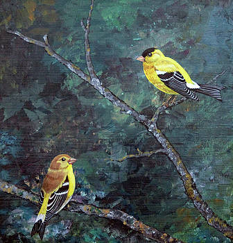 Pair of Finches by LaReine McIlrath