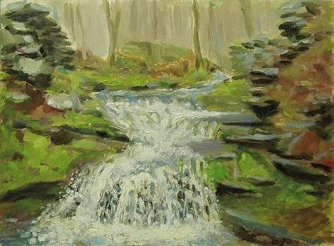 Palenville Falls Catskill by Nicolas Bouteneff